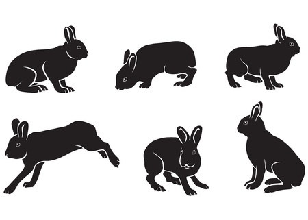 The silhouettes of the hare in different poses. A hare is sitting, hare worth it, hare run, hare in profile, hare full face Vector