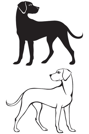 Silhouette and contour illustration of dog Çizim