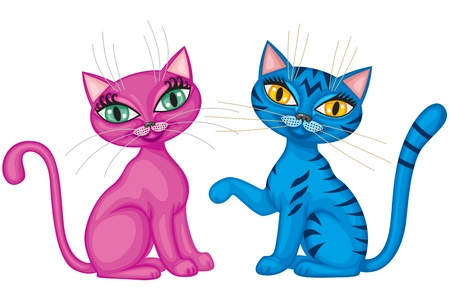 Cute magenta kitty and tabby blue cat