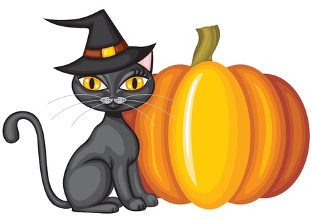 Halloween black kitty in the hat and the pumpkin Vector