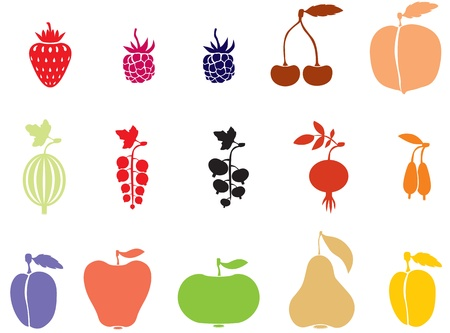 A set of images of fruits and berries Vector