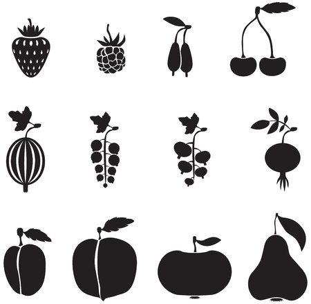 A set of images of fruits and berries