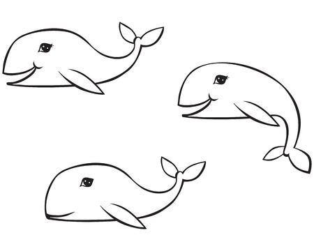 A set of contour images of whales in different poses Stock Vector - 14627819