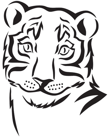 Contour image of a tiger head Stock Vector - 14690556