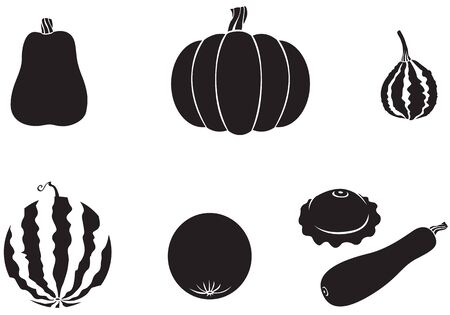 Pumpkin, watermelon, melon, zucchini, squash Stock Vector - 14789909
