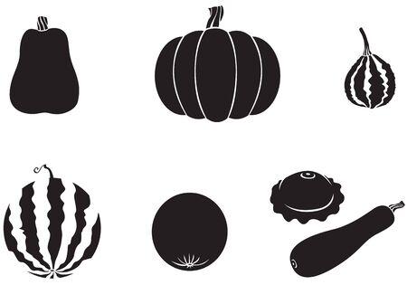 Pumpkin, watermelon, melon, zucchini, squash Stock Vector - 14789909