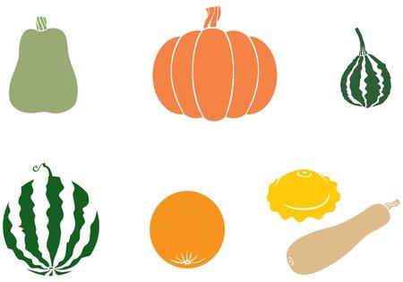 Pumpkin, watermelon, melon, zucchini, squash Stock Vector - 14789908