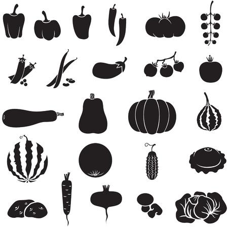 Eine Reihe von Bildern von verschiedenen Gemüse Standard-Bild - 14789915