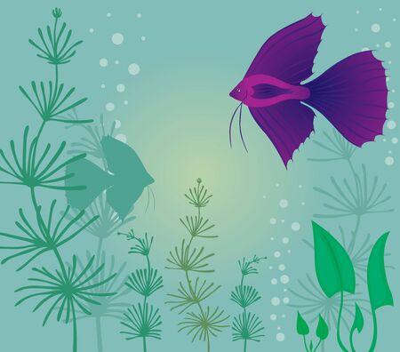 Aquarium background with fish and algae Stock Vector - 14989636