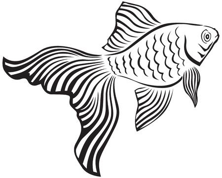 Images en noir et d'un poisson d'or avec son veiltail Vecteurs