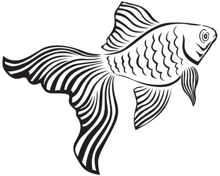 underwater fishes: Line art image of a gold fish with its veiltail Illustration