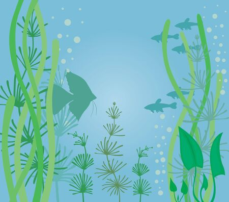 Aquarium background with fish and algae Stock Vector - 15030364