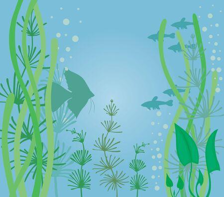 Aquarium background with fish and algae Stock Vector - 15030364