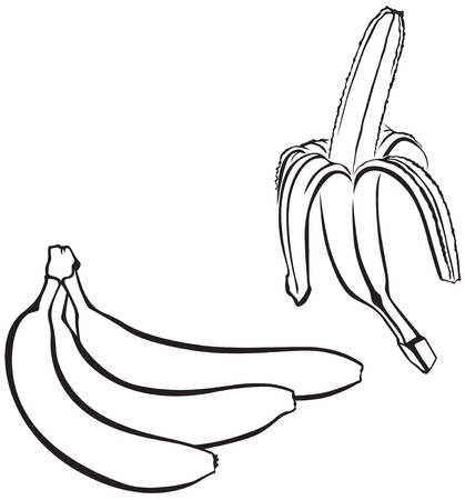 Contour image of a bunch of bananas and one peeled banana Vector
