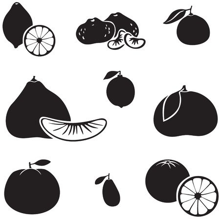 Set of silhouette images of citrus fruits Illustration