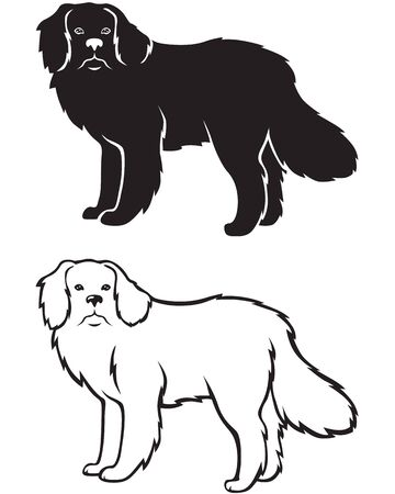 Contour and silhouette of the Newfoundland dog breed Vector