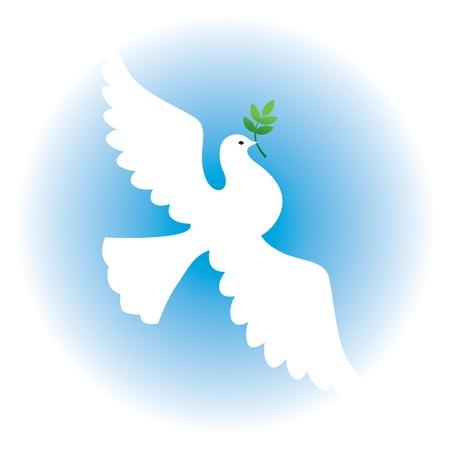 paloma caricatura: Paloma blanca con una rama sobre un fondo de cielo azul