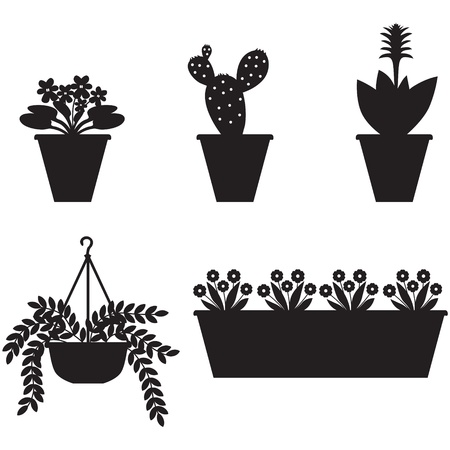 Silhouettes of window flowers in different pots