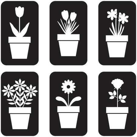 flower cartoon: Conjunto del icono de las flores en macetas Vectores