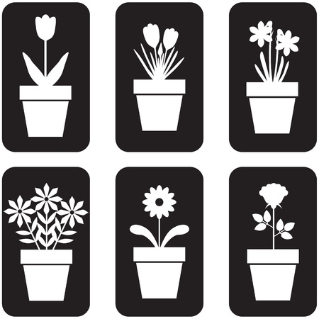 flowers cartoon: Set of icon of flowers in pots