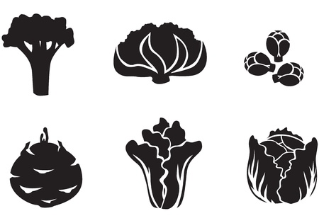 Set of silhouette images of different varieties of cabbage
