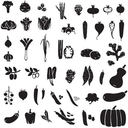 jengibre: Conjunto de im�genes de siluetas de diferentes verduras Vectores