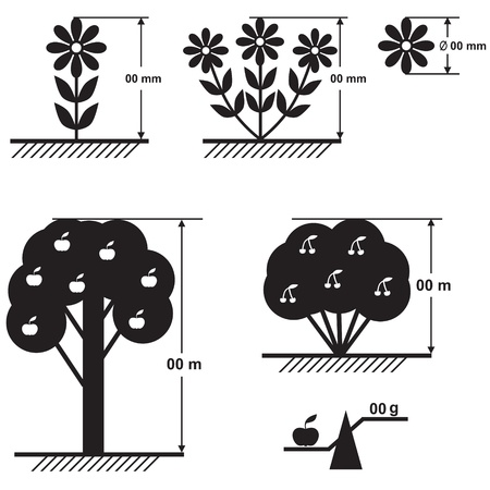 floriculture: A set of schemes of flowers, fruit trees and bushes