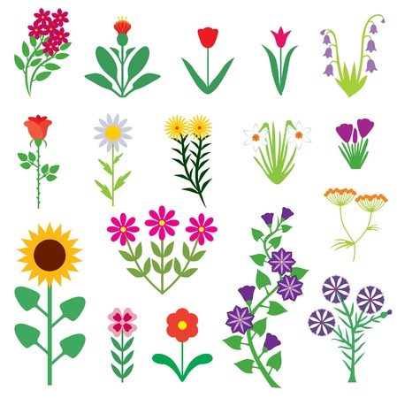 flowers cartoon: A set of images of different flowers Illustration