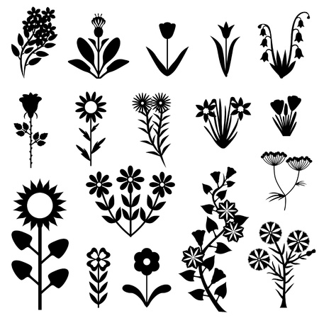 A set of images of different flowers Vector