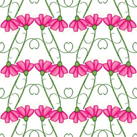 claveles: Patr�n sin fisuras con claveles de color rosa
