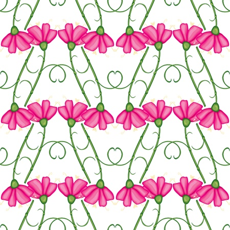 Seamless pattern with pink carnations Vector