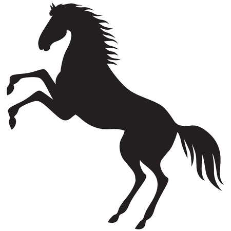 hind: A silhouette image of a beautiful horse has stood on its hind legs
