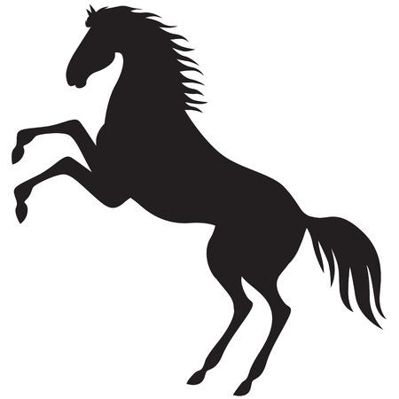 black horse: Una imagen de la silueta de un hermoso caballo se ha mantenido en sus patas traseras