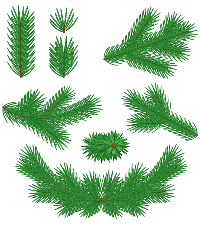 Set green Christmas fir branches Stock Vector - 23551837