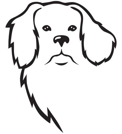Contour newfoundland dog head in full face