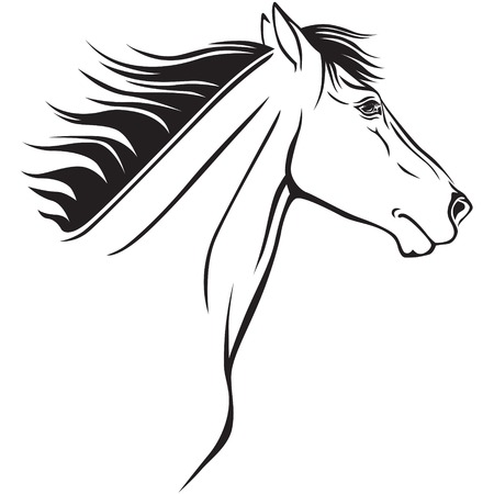 Contour image of a beautiful horses profile Stock Vector - 23551866