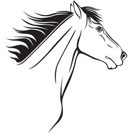 Contour image of a beautiful horses profile Stock Vector - 23551866