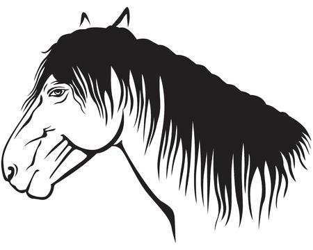 Contour image of a pony muzzle profile Stock Vector - 24017378