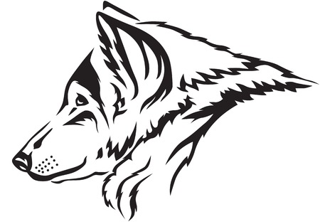 muzzle: The contour image of the wolfs muzzle Illustration