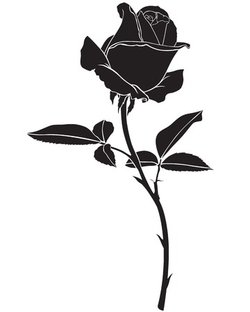 silhouette fleur: image Silhouette belle fleur de rose Illustration