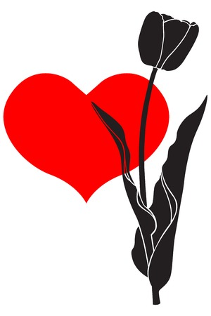 Silhouette image spring tulip flower on heart background