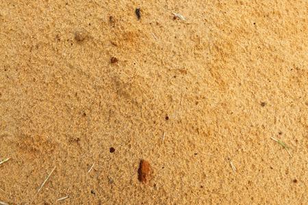 starr: Textur der nassen Sand braun starren