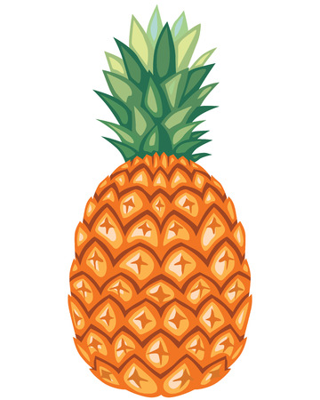 Cartoon colorful image pineapple fruit