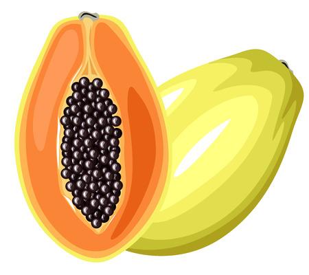 Cartoon colorful image papaya fruit Vector
