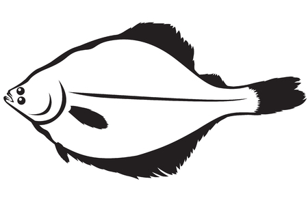 Contour image of fish flounder Vector