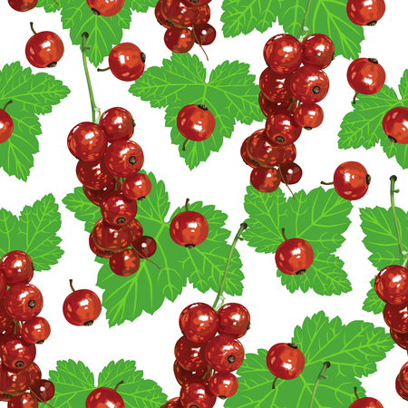 red currant: Pattern seamless of bunches of ripe red currant berries and green leaves