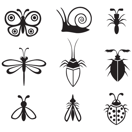 Set of black-and-white image different insects Vector
