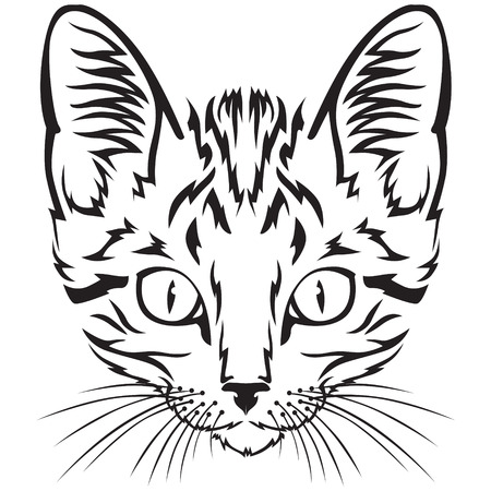 Contour black-and-white image muzzle of tabby kitten Vector