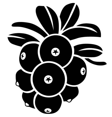 Silhouette black and white image of cowberries