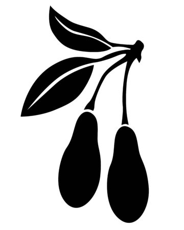 drupe: Silhouette black and white image of dogwood berries